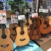 ミニギター大量入荷!夏のミニギター祭り!