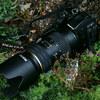My best shot / smc DA★60-250mm F4ED[IF] SDM