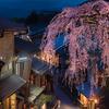 京都へ桜を撮りに行く🌸📷 ①
