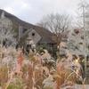 箱根ガラスの森美術館・クリスタルガラスのススキの時期