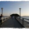 話題の「竹島」に行ってみた。