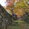 湖東三山:百済寺,唐破風のある本堂と黄葉と。