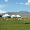丸紅、モンゴル拠点のフィンテック企業と戦略提携