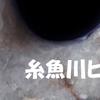 糸魚川ヒスイの勾玉(スタンダード系のフォルム)