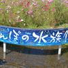 田んぼの水族館