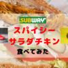 【夏限定】サブウェイのスパイシーサラダチキンを食べてみた!レモンソースとの相性バツグン