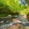 木郷滝自然つりセンターで幻のオオヤマメを狙う。【行き方・住所・料金まとめ】