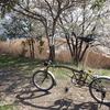 ブロンプトン号悪戦苦闘 4年ぶりに自転車に乗ったらヘロヘロ ヴィゼポレールでチャバタを購入