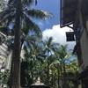 ハワイでまた一つ【アポをする】という夢を叶えてきました!