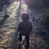 晴れた日曜日、森へお散歩。