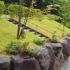 霊園風景 その107   「‥梅雨来たりなば 夏遠からじ」