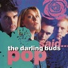 #0070) POP SAID... / THE DARLING BUDS 【1989年リリース】