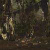 FF14セリフ集。ラケティカ大森林の風脈の座標。風景画像と共に!