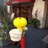 〔東京散歩〕吉祥寺のおしゃれな紅茶専門店「カレルチャペック紅茶店」