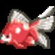 赤斑病になった金魚