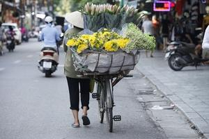 ベトナム語翻訳者の試行錯誤――前編【ベトナム語ホンヤクの世界】