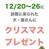 12/20〜26はクリスマスプレゼントをご用意🎁✨