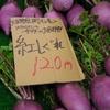 野菜を買いに (Vol.3)  大船 かん太村