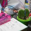 土壌湿度センサーで水やりをお知らせする(1)