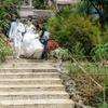 近況報告と諸々(結婚式とかね!)