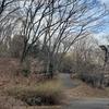 パワースポット巡り(802)都立桜ヶ丘公園(東京都多摩市)