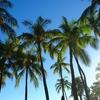 【初めての方へ】自死遺族の会「アルファの会@東京」(by Hug Hawaii)のご紹介