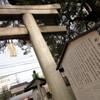 京都にあるプチ熊野・新熊野神社