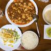 麻婆豆腐を夕食に決定 土砂降りの為爆睡