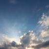 雨あがりの夕空と、夏のこぼれ種