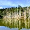 2021.3.17笹川湖