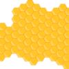 なぜハチミツは固まるの?固まった場合の対処方法