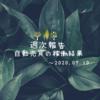 【週報:65週目】7月入り早々から好調、下半期への期待高まる(^^)(2020.07.10現在)