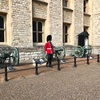 【ロンドンひとり旅】雨の日は行くだけ無駄!!バッキンガム宮殿での壮絶場所取り合戦