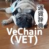 仮想通貨辞典 VeChain (VET)