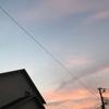 長岡花火をNHK地上放送で観る