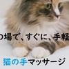 【そばに置きたい癒しグッズ】ペット不可でも飼える(買える)マッサージ・ツボ押し猫『こりもむにゃん』