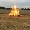 炎の落穂拾い