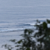 週末ライフ。「青く静かな春の海辺にひとり佇み、寄せては返す波を眺めて過ごす時間はおっとりと過ぎゆく陽気に体もほぐれるサーフィン日和」の巻。