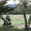 湖北・長浜逍遥(10) 鶏足寺と石道寺。