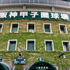阪神甲子園球場に行ってきた2(2019年5月2日、阪神対広島戦)