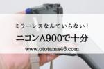 【ニコンA900】安いデジカメで十分!こどもを撮るなら最新機種はいらない