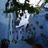 モロッコ(カサブランカ、メクネス、フェス、シェフシャウエン、テトゥアン、タンジェ、ラバト)