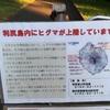 2018/8/6  利尻富士