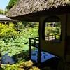 【京都】『白沙村荘 橋本関雪記念館』に行ってきました。  京都観光 女子旅 主婦ブログ