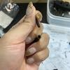 第10工程:リヤアッパーアームの取り付けできるかな