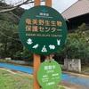 奄美大島観光おすすめルート⑩ ~奄美大島 マテリアの滝 奄美フォレストポリス