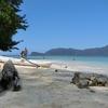 マムティック島に行ってきた。【行き方も解説】 コタキナバルのシュノーケリングにおすすめのスポット オオトカゲも見れる島!アイランドホッピングもおすすめ