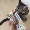CIAOの焼かつお 本格だし味を愛猫にあげてみた!原材料や食いつきは?