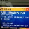 【7月1日 82日目】京都に一時帰還だべ〜(●´ω`●)