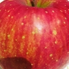 りんごとサツマイモで服薬支援情報